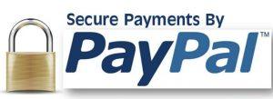 Nettikasino Ja Paypal Logo